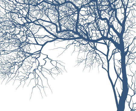12 Tree Branch Vector Images