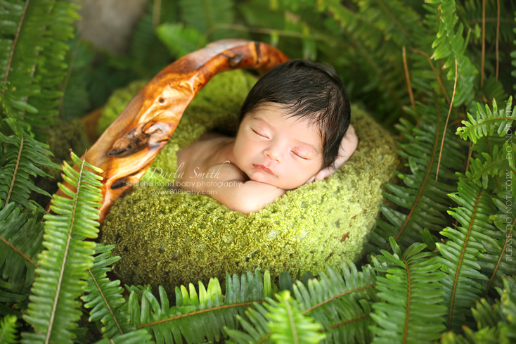 Newborn Baby Girl Photography Outdoors