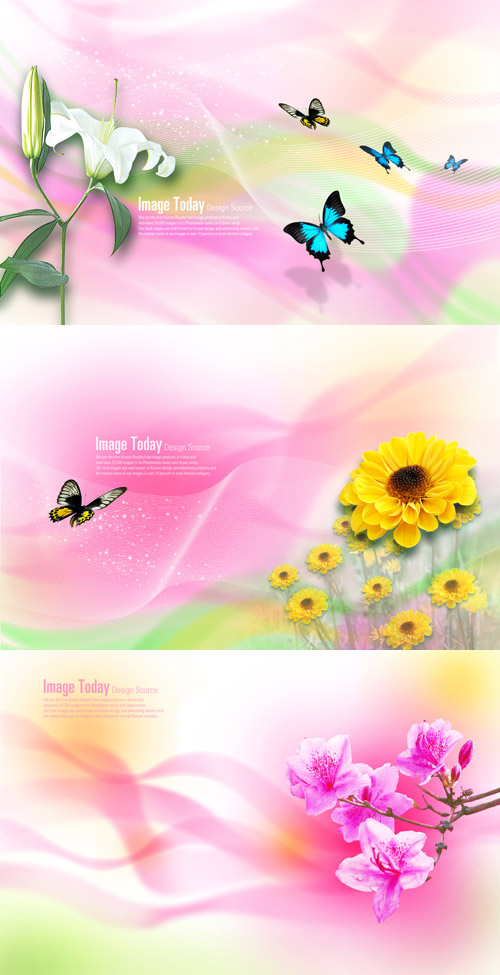 Photoshop PSD Free Download