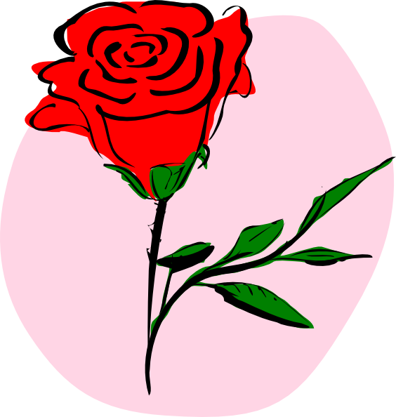 7 Red Rose PNG Free Vector Images