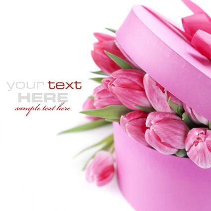 10 Beautiful Flower PSD Images - Flower Vectors, Beautiful