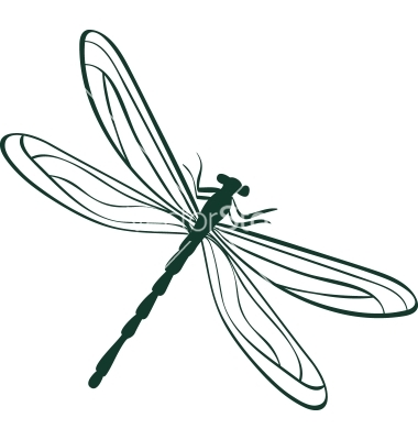 14 Dragonfly Vector Graphics Images