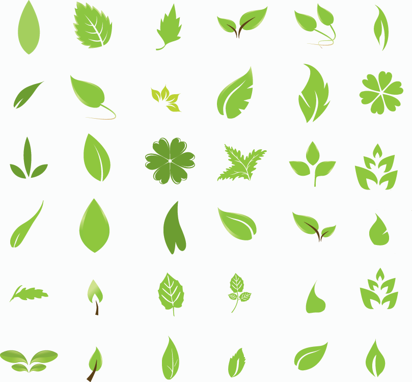 16 Green Leaf Vector Free Download Images