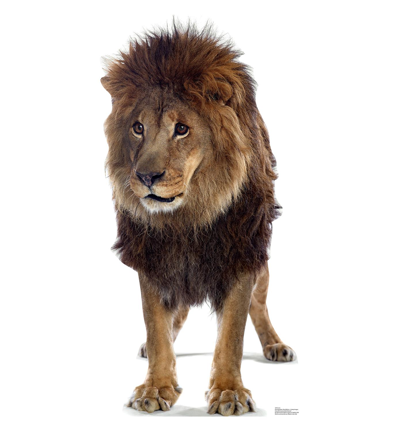 Lion King Cardboard Cutout