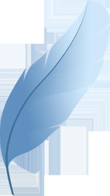 Photoshop Feather Logo