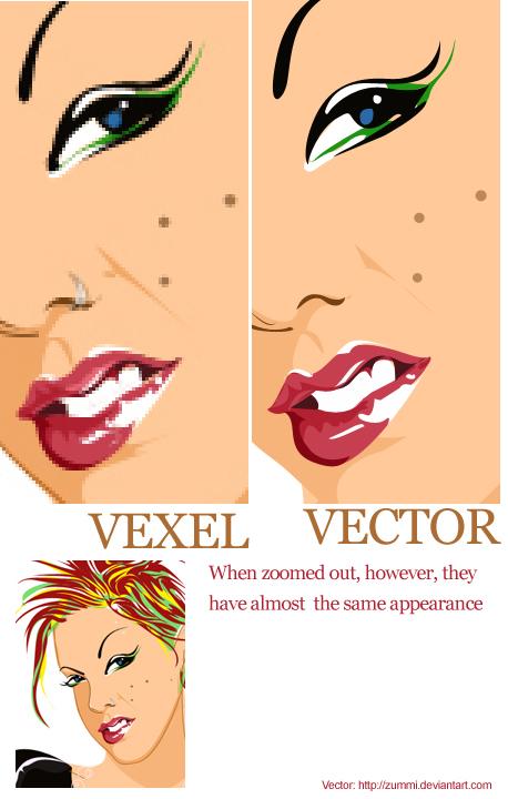 Vector quantity examples list