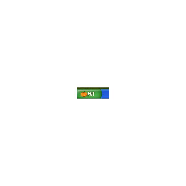 Windows XP Start Button Icon