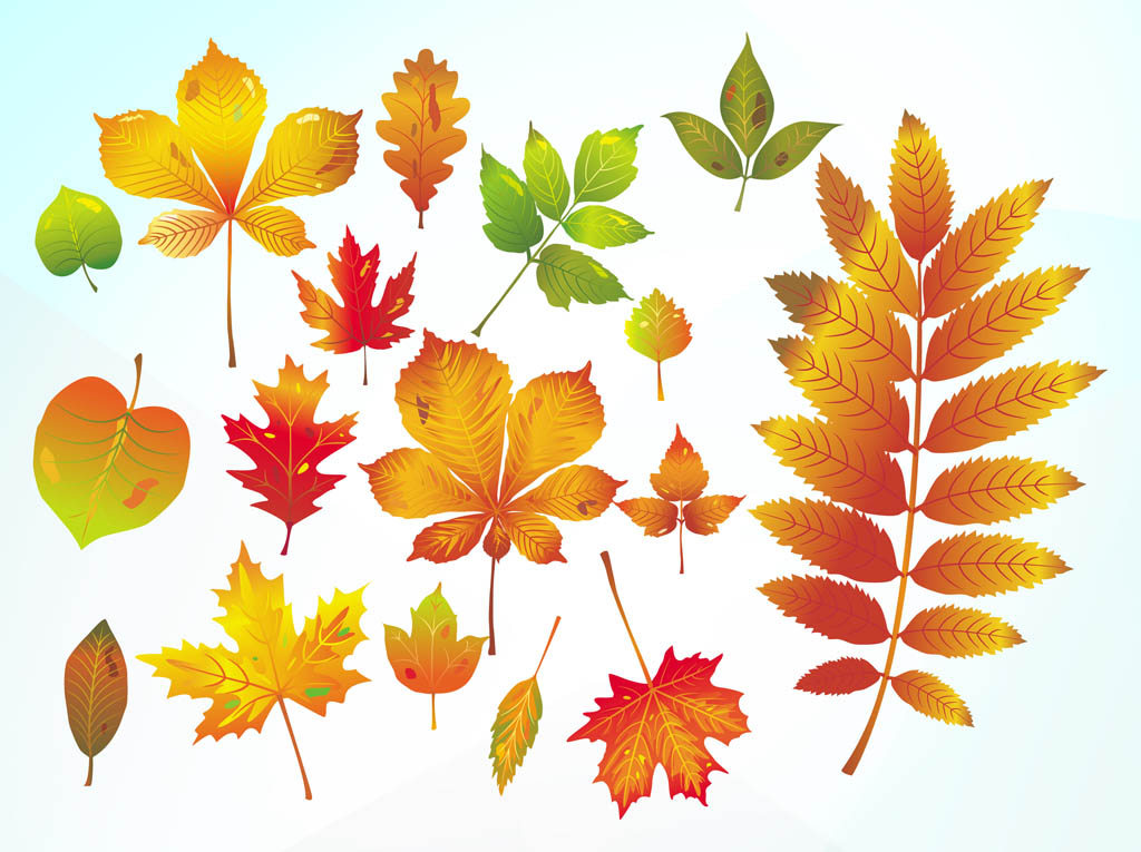Charming free autumn vector images