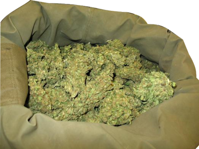 10 Bag Of Weed PSD Images