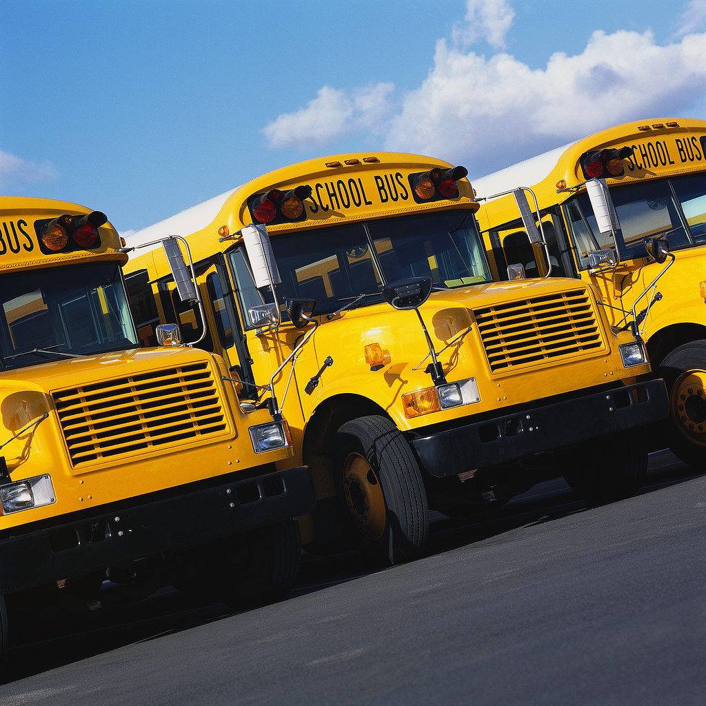 Transportation School Buses