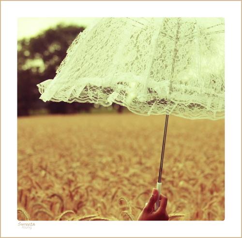 Vintage Summer Photography Umbrella