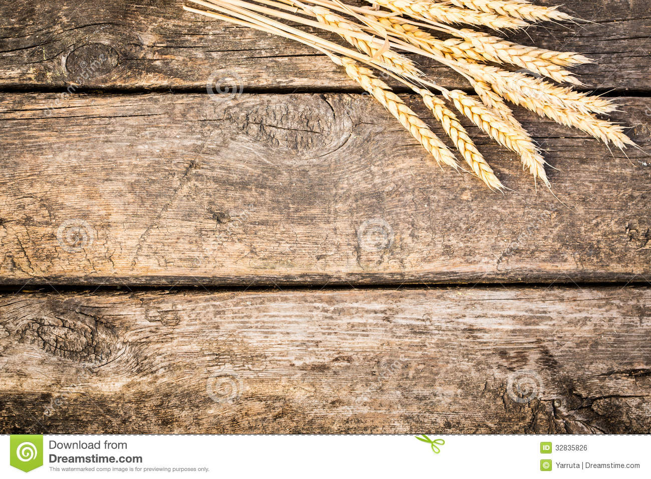 5 Wheat Vector Wood Images