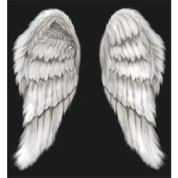 17 White Angel Wings PSD Images
