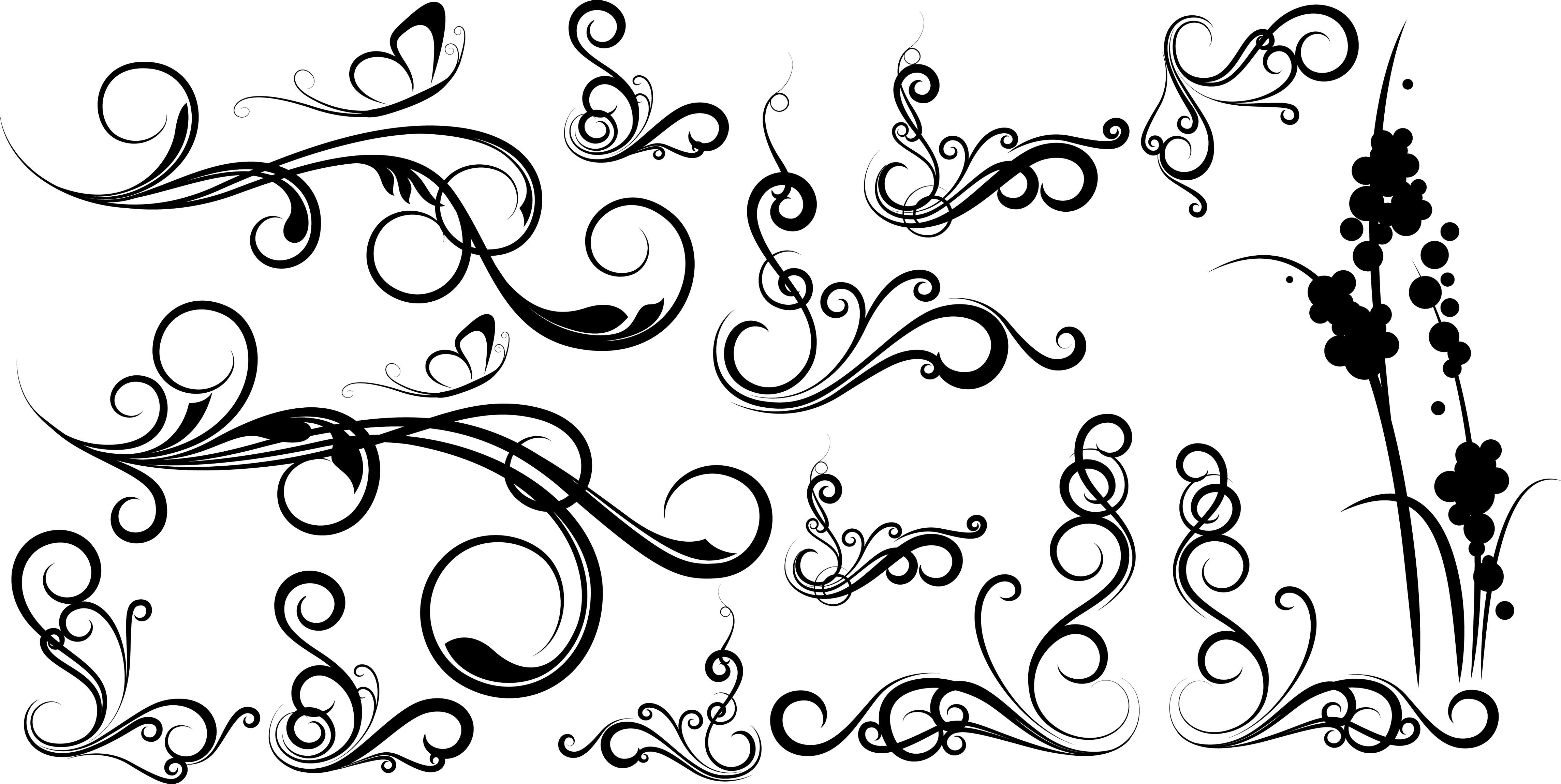 Elegant Swirl Designs Vector