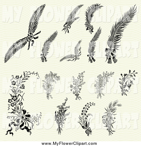 Feathers and Flowers Clip Art