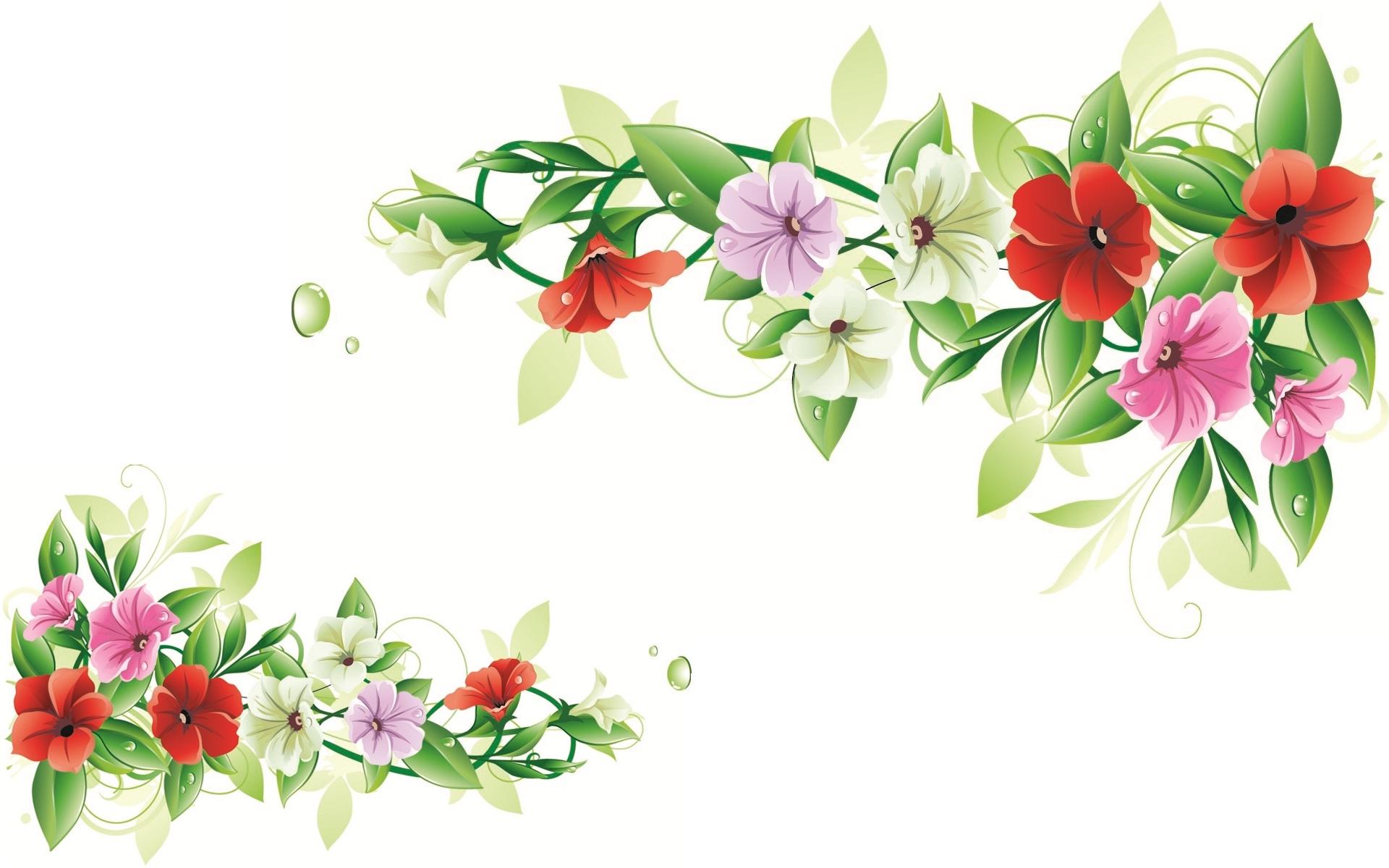 Flowers Frames Download