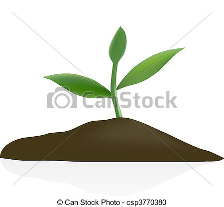 Soil Clip Art for Young Plants