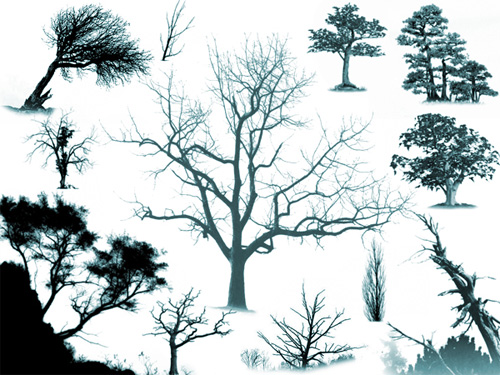13 Photoshop Tree Brushes Images