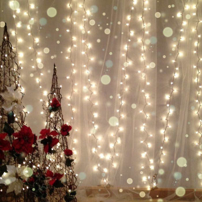white christmas light backdrop