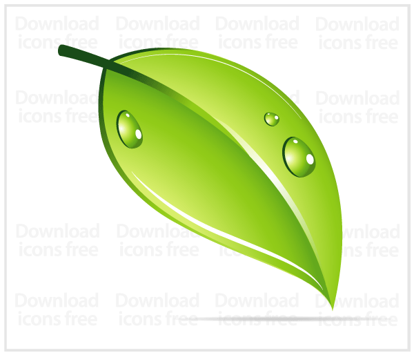 Free Vector Water Drop with Leaf