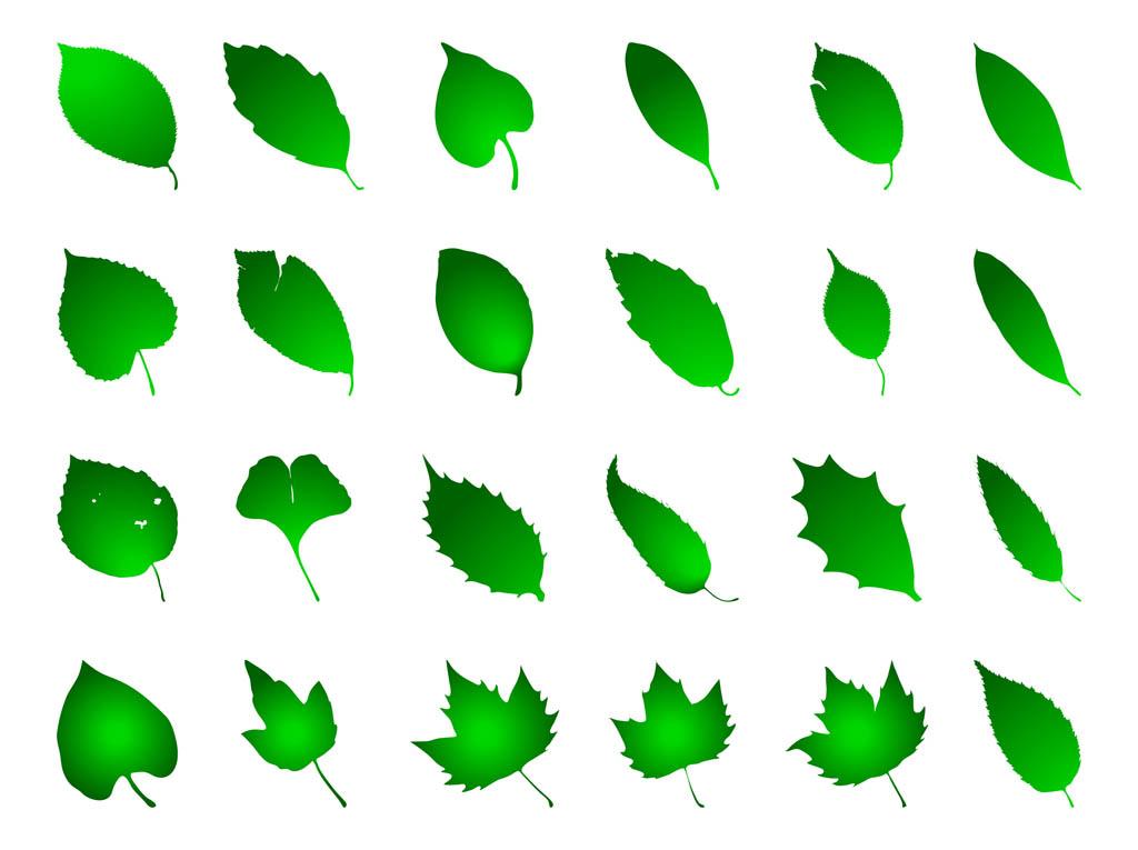 Green Leaf Vector Clip Art