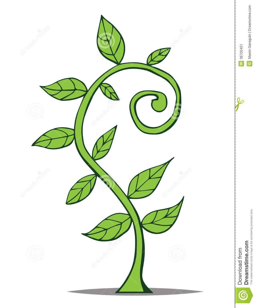 Growing Plant Vector