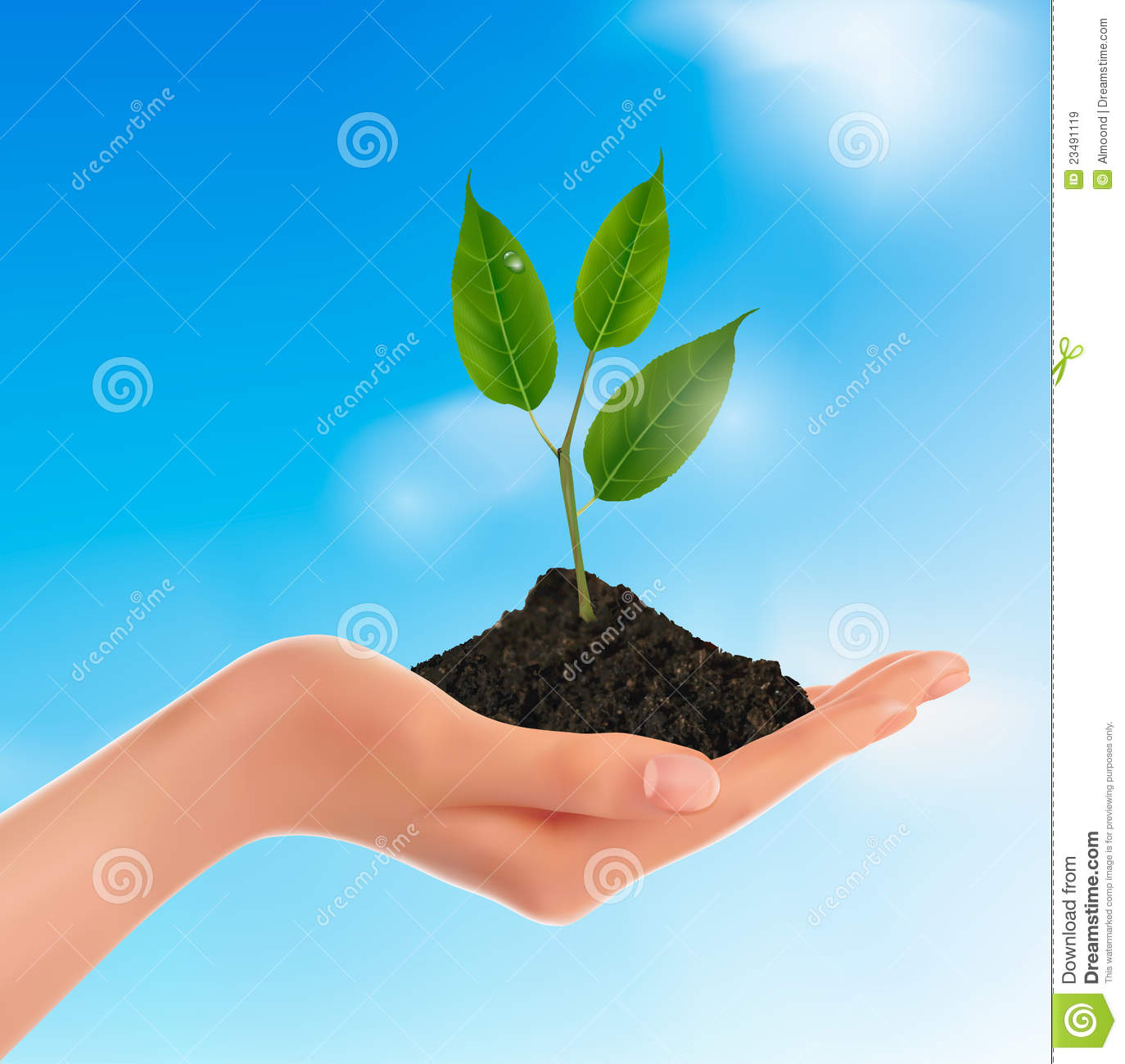 Vector Hands with Plants