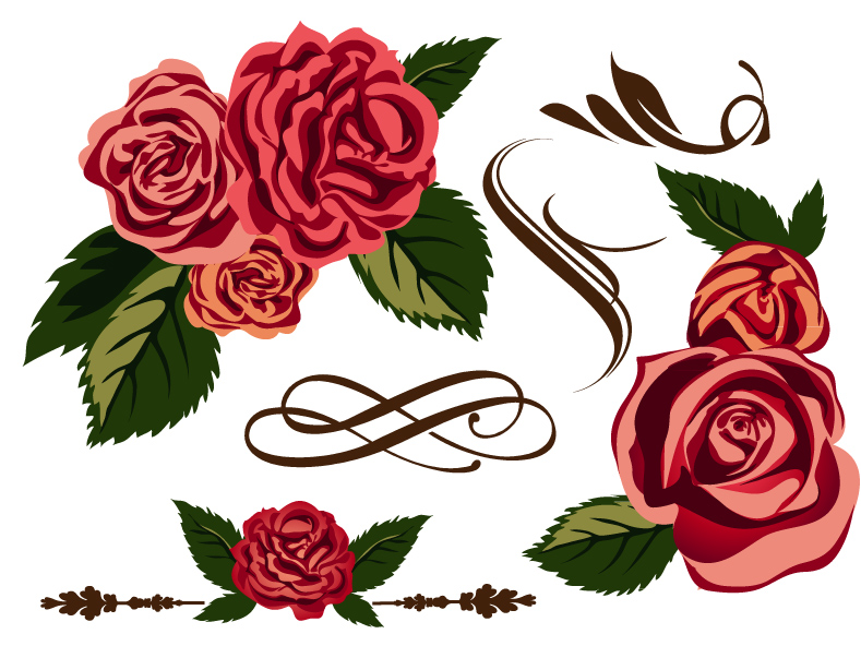 12 Free Vector Graphic Roses Images