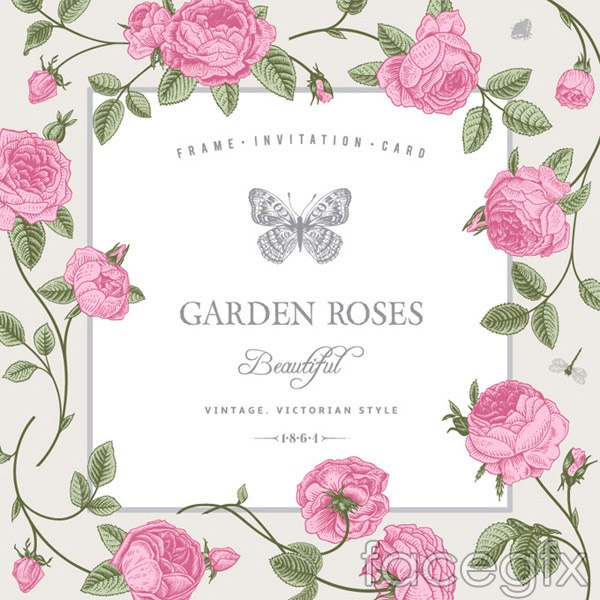 13 Rose Border Vector Images