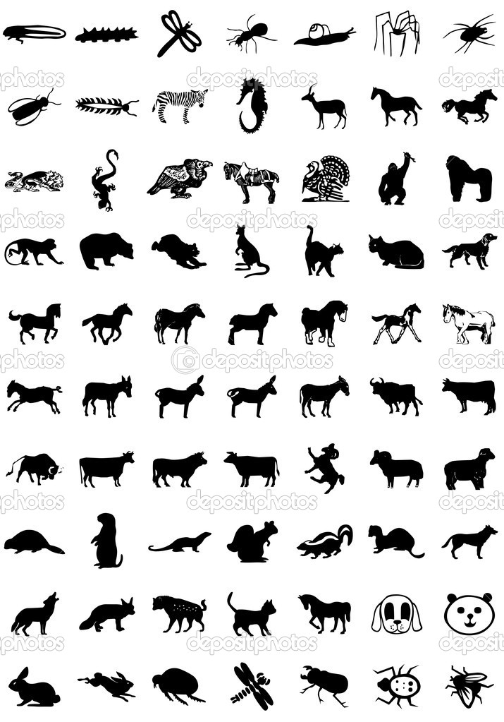 16 Icon Animal Species Images