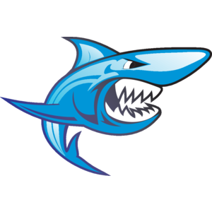 15 Shark Vector Icon Images