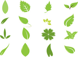 Leaves Free Vector Graphics