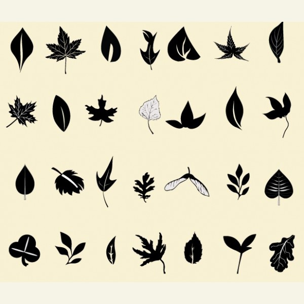 18 Free Leaf Vector Images - Green Leaf Vector, Free ...