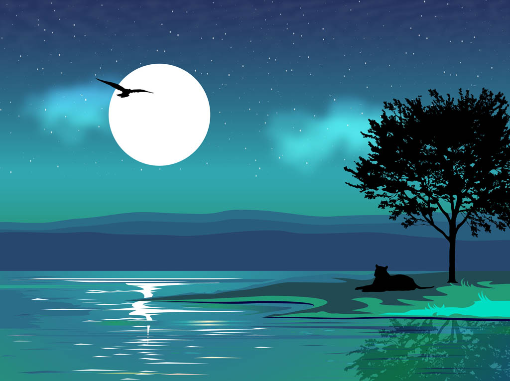 15 Vector Night Landscape Images