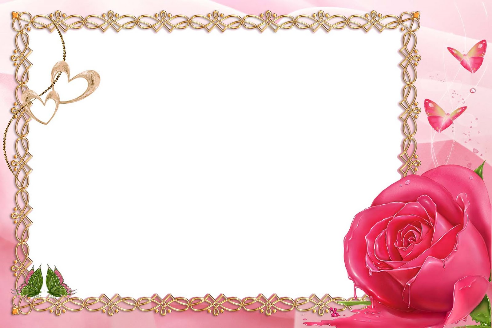 11 Picture Frames For Photoshop Download Images