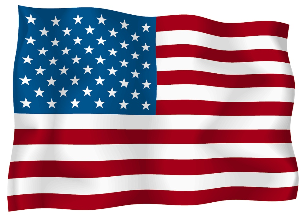 USA Flag Vector Free