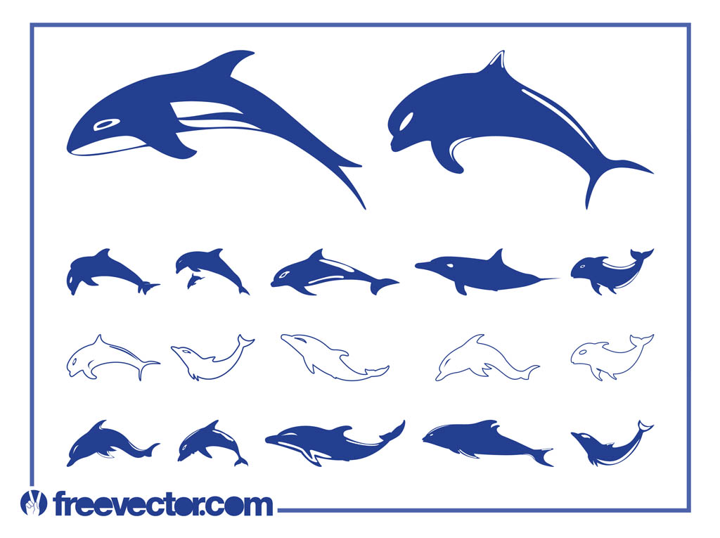 14 Dolphin Vector Art Images