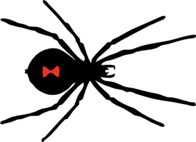 Black Widow Spider Cartoon