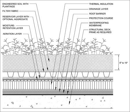 16 Green Roof Design Details Images Green Roof Detail