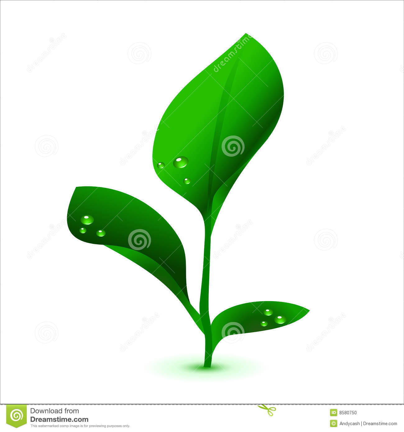 Plant Vector Graphic