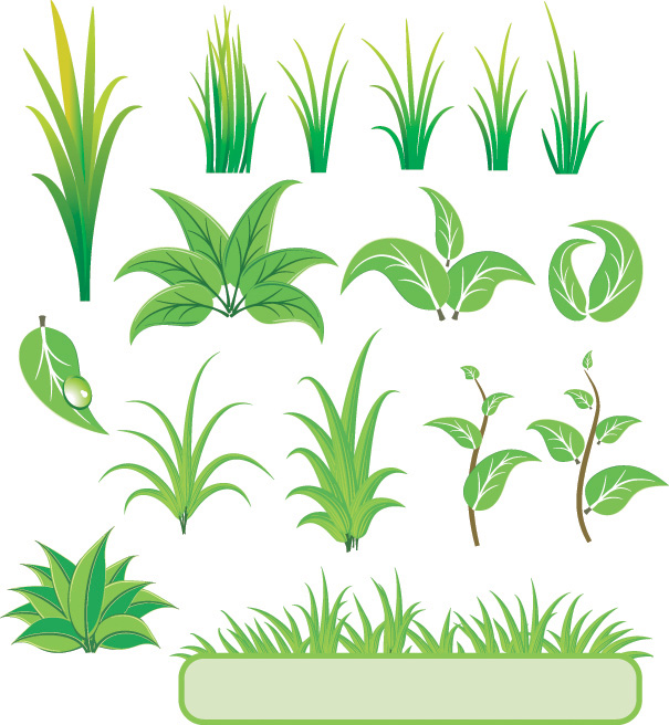 Plants and Grass Vector
