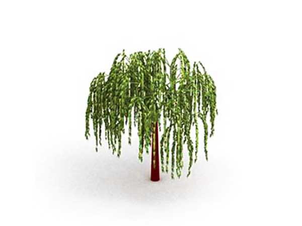 Willow Tree Clip Art Free
