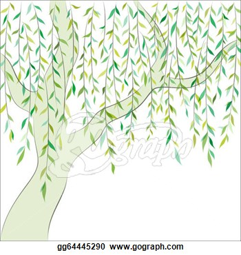 Willow Tree Vector