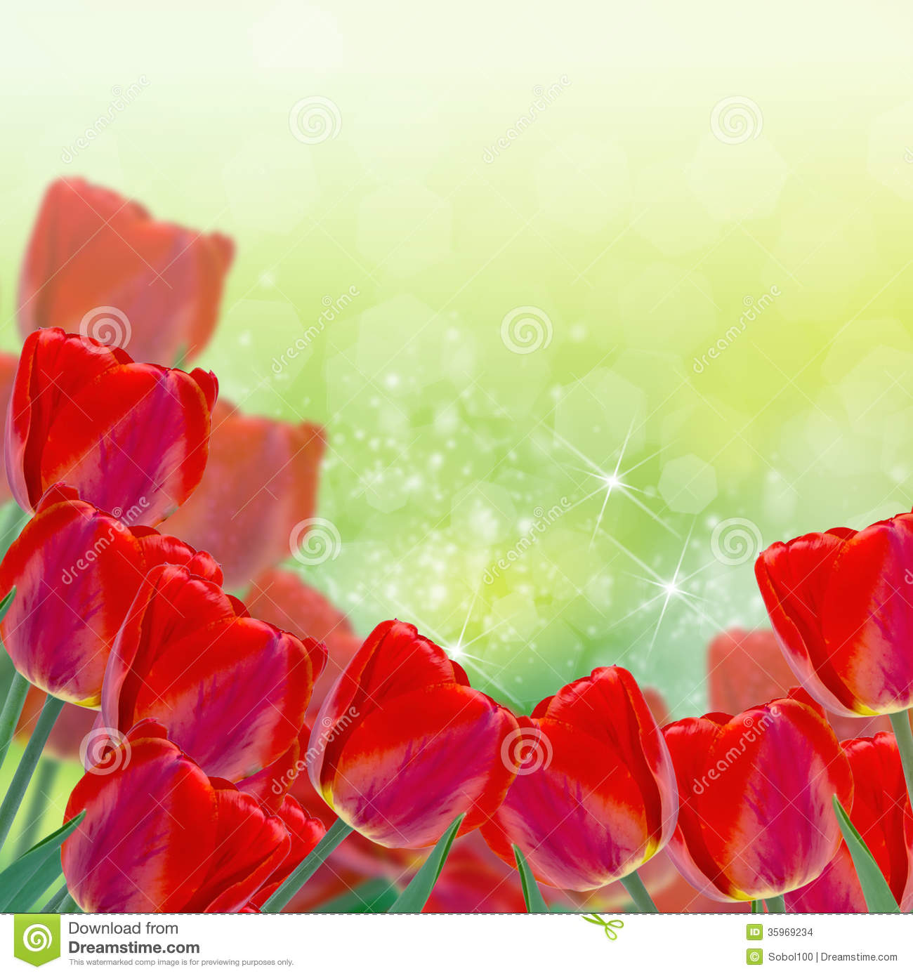 Abstract Floral Design with Fresh Flowers
