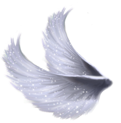 angel wings psd - photo #1