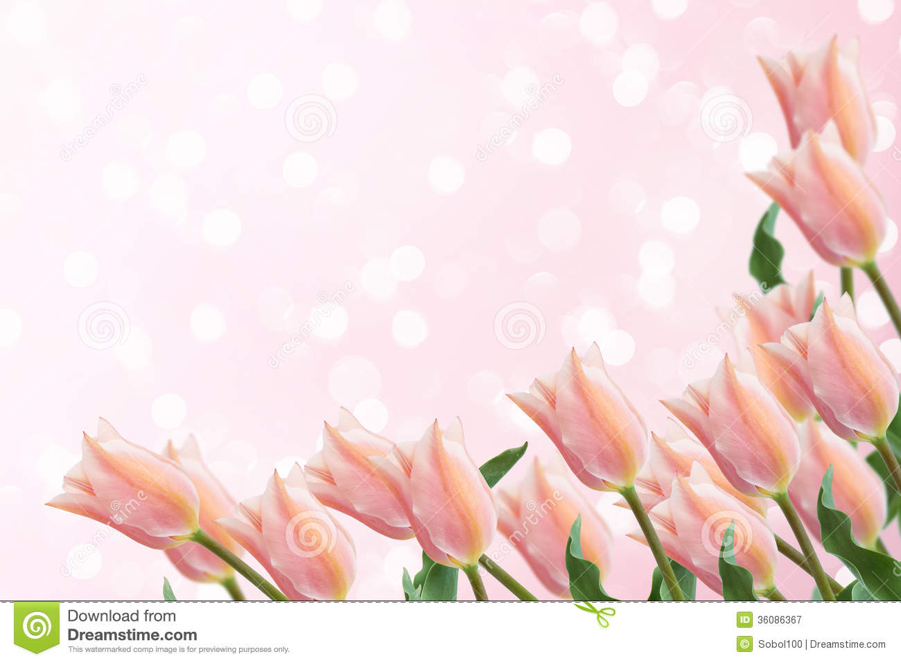 Elegant Spring Flower Designs