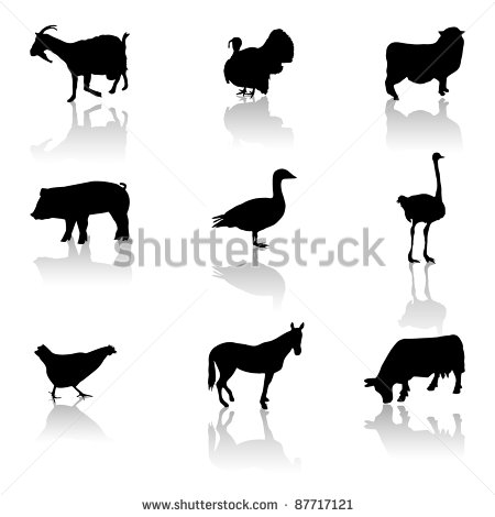 Farm Animal Icons