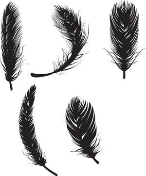 15 Feather Vector Graphics Images