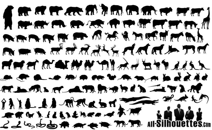 Free Animal Silhouette Icons