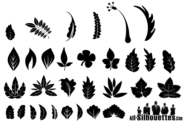17 Cartoon Vector Leaf Silhouette Images